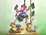 hatteland monkeys illustration