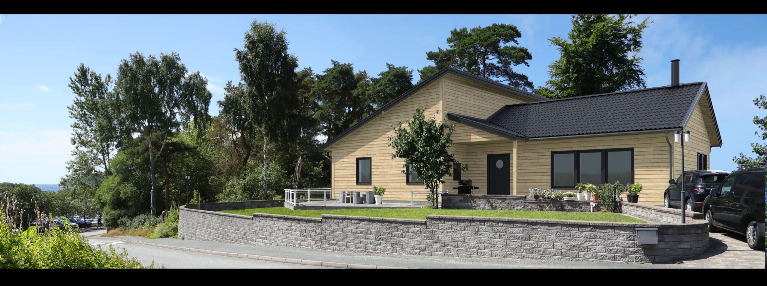 visualistering-natur-hus-panel-svart-tak