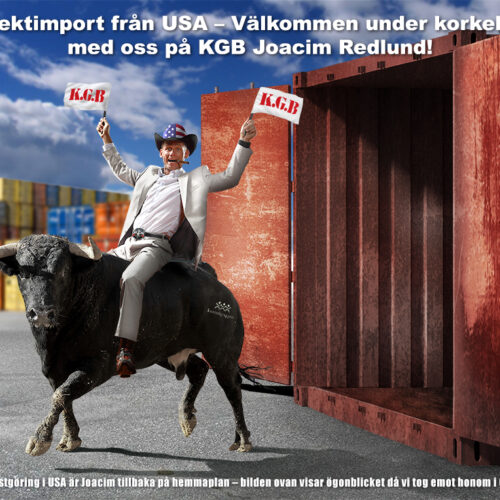konsult rider på en tjur, vid hamnen i Sverige, från USA.