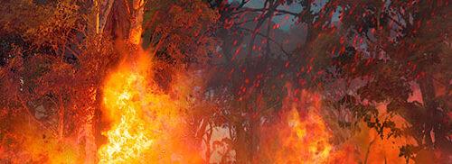 Digitalt målad scendekor till Kungsbyns djurpark, skapad på laj illustration. Tema, Australien. Inzoomad