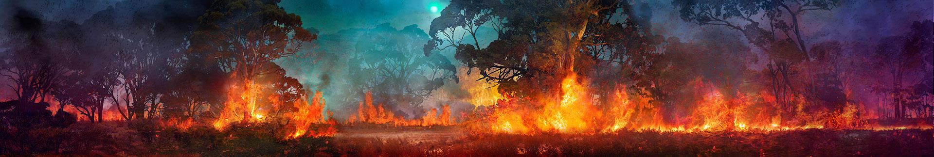 Digitalt målad scendekor till Kungsbyns djurpark, skapad på laj illustration. Tema, Australien.